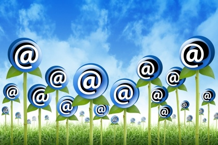 email_contact